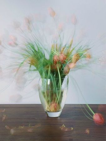 Michael Wesely-flowers1