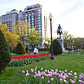 BOSTON COMMON PARK (201).JPG