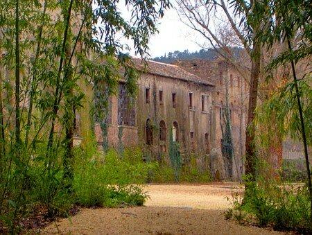 maison_bambou