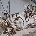 Les roues en huîtres