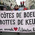 Marche contre les abattoirs