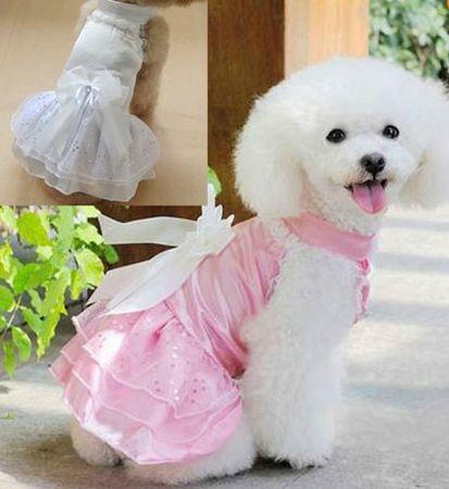 robe de mariée chien rose