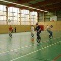 Vosges + basket