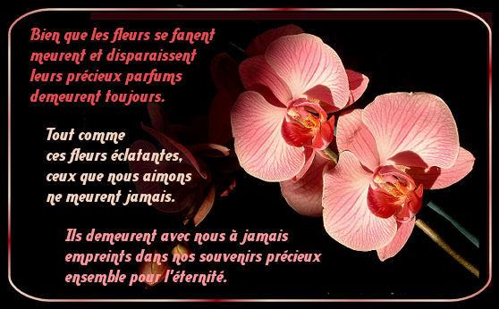 deces_fleur