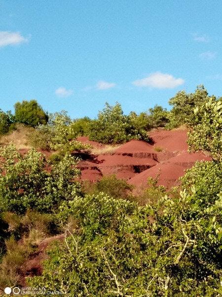 Dunes de Maraval (17)