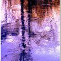 Reflets de glace