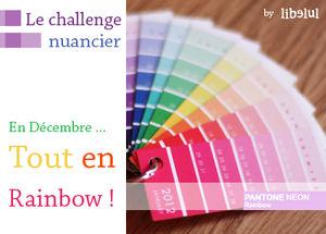 libelul_banner_challenge_nuancier_201112
