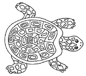 coloriage_tortue