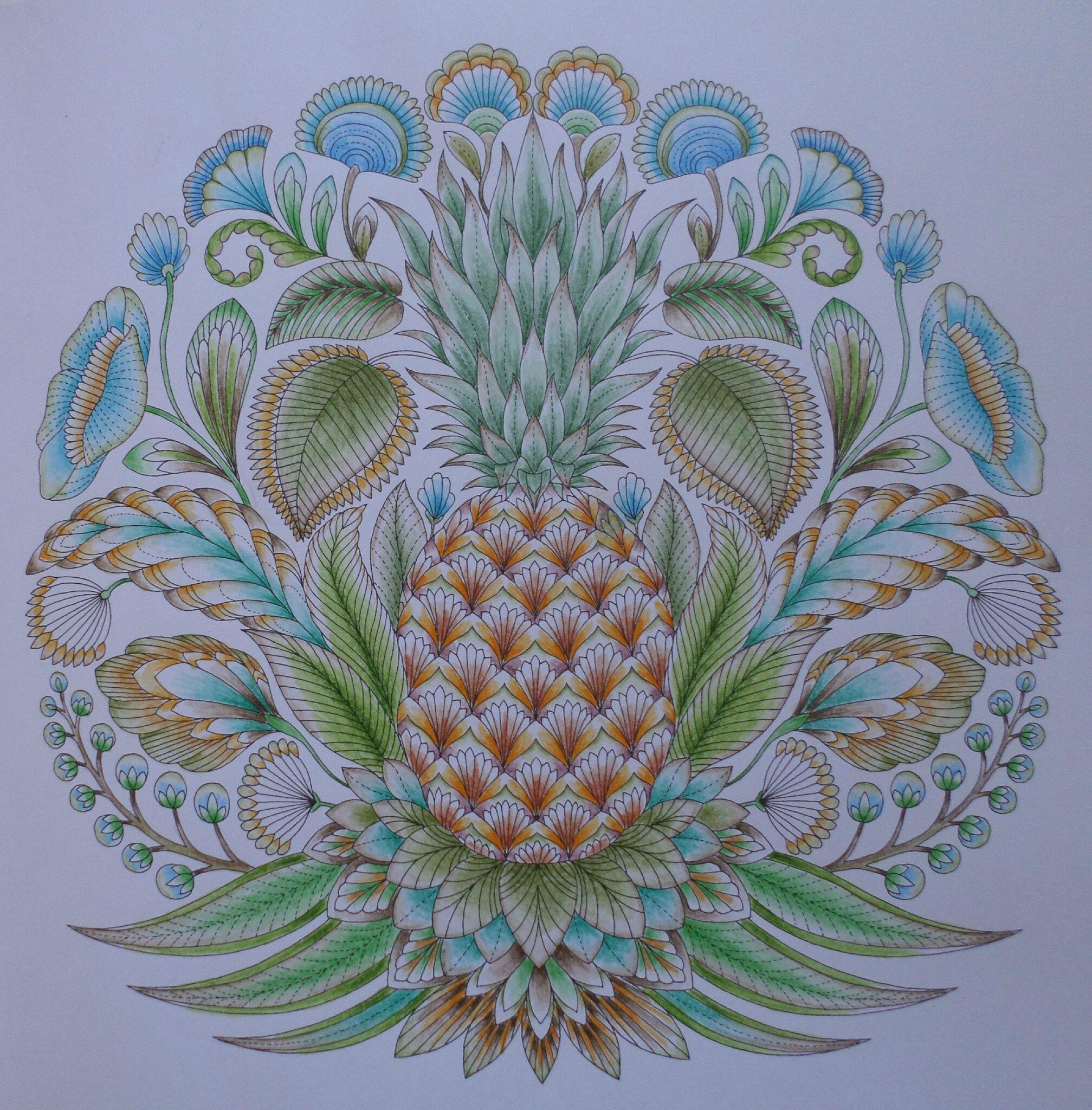 Coloriage La Foret Tropicale.Grand Ananas De La Foret Tropicale Steffy Elsass Crea