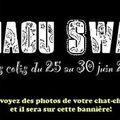 Bannière du Miaou Swap