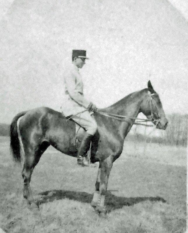 GRIBIUS à cheval