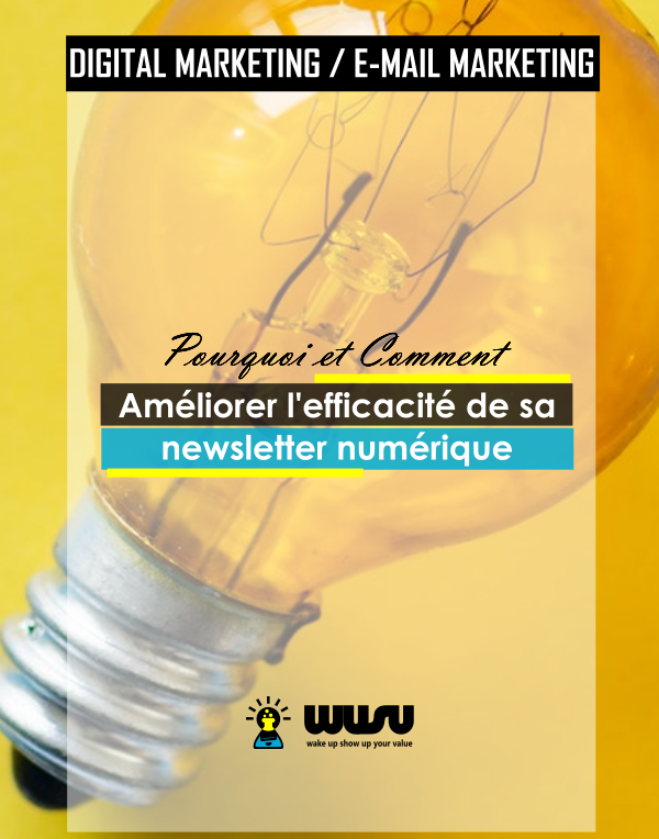 ameliorer-efficacite-strategie-newsletter-digital-marketing-winnie-ndjock-wusu-box-2019