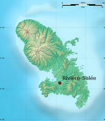 Rivieresalee
