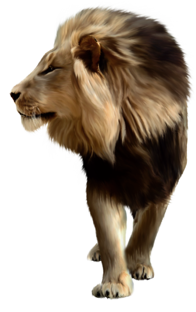 lion_png_by_jess8181-d3l9820