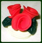 Fleur_Euphroisine
