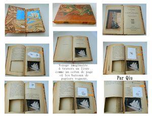 Livre de Qiu