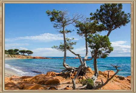 Plage Palombaggia1