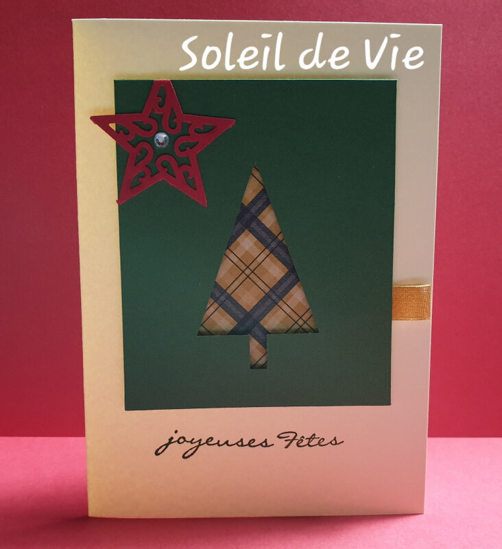 202001-SoleildeVie-cartevoeux-stampinup-perfosapin (1)
