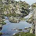 ***Lacs de Néouvielle 2011
