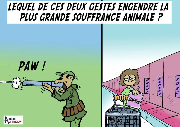 chasse ou supermarché