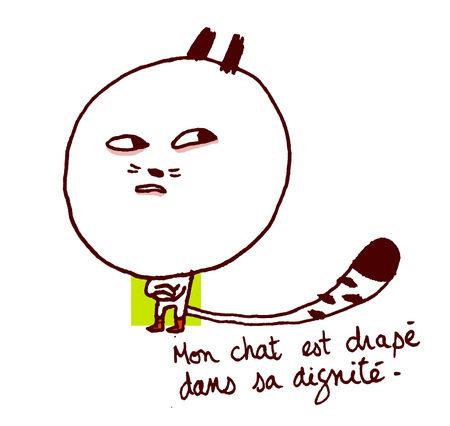 mon_chat_114