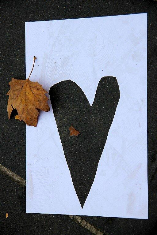 Coeur, automne_7523