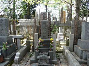 Canalblog_Tokyo03_11_Avril_2010_023