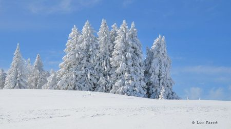 neige - 024