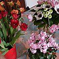 fleurs 25