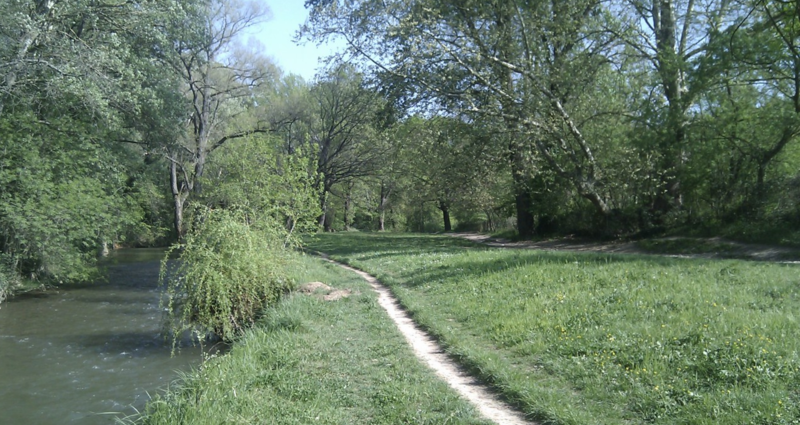 rive de l'arc1