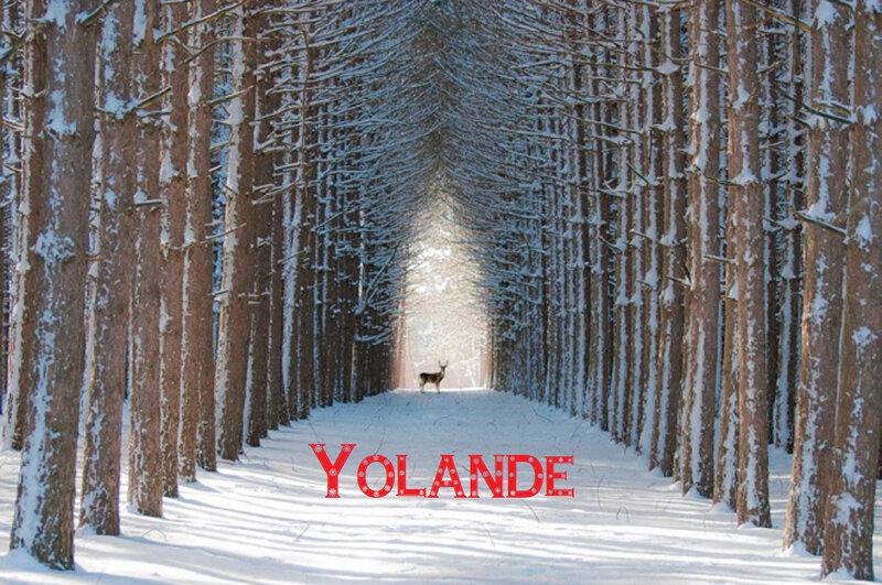 hiver26