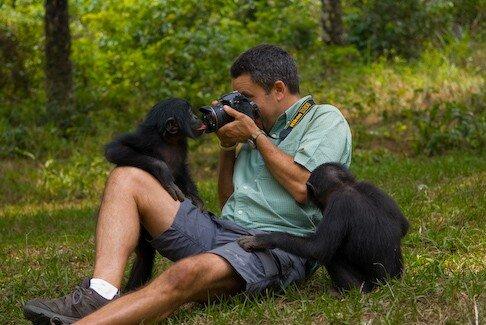 Sanctuaire Lola Ya Bonobo (Kinshasa): Robert J. Ross (autoportra