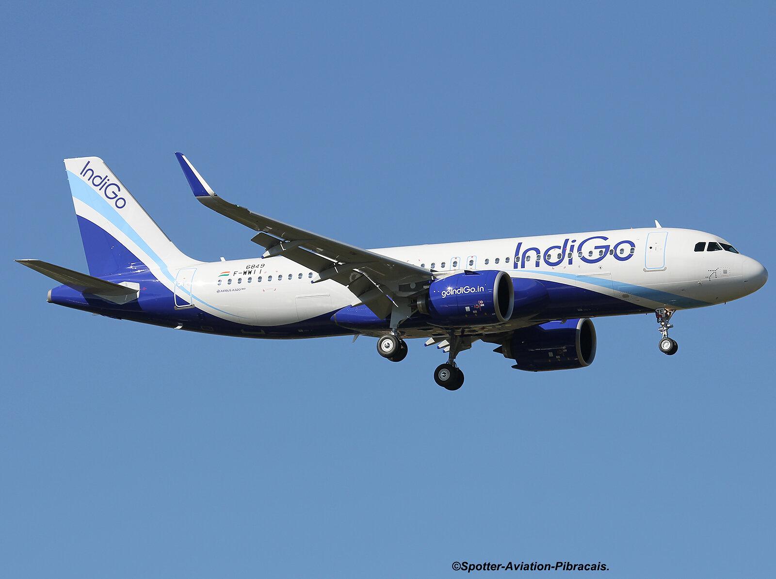 Indigo (NEO)