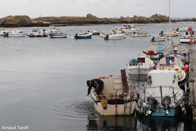 00813 Pouldreuzic - Pays Bigouden Sud - Le Port de Plaisance de Saint-Guénolé blog