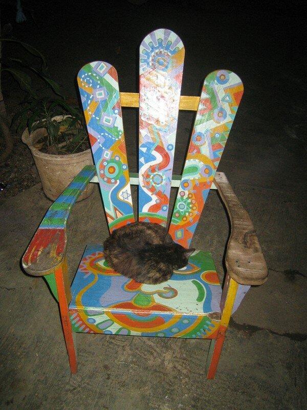 Chat du Nicaragua