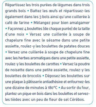 Batonnet_de_croquettes_de_l_gumes