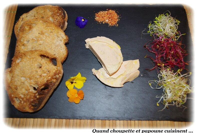 assiette de foie gras, sel au piment d'espelette et pousses germées-8190