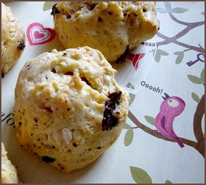 biscuit_puree_de_noisette