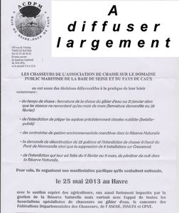 chasse au havre 001