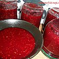 Confiture de fruits rouges, version tmx