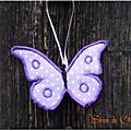 Papillon_1