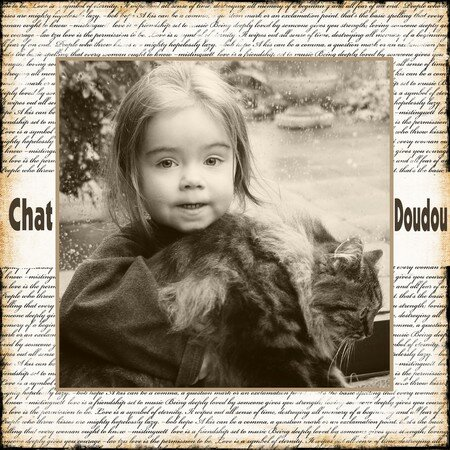 Chat_Doudou_2