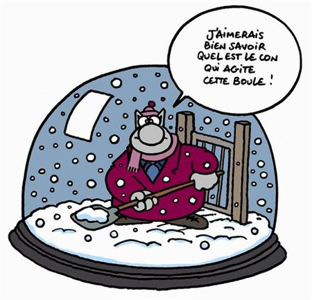 chat_neige