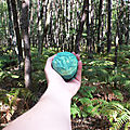 Baignons-nous dans les bois
