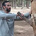 Arts martiaux et méditation, à rabat