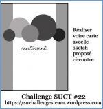 challenge22SU 14-04