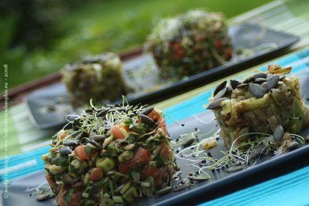 tartare_saumon_et_fondue_poireau