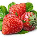 Idées recettes avec des fraises