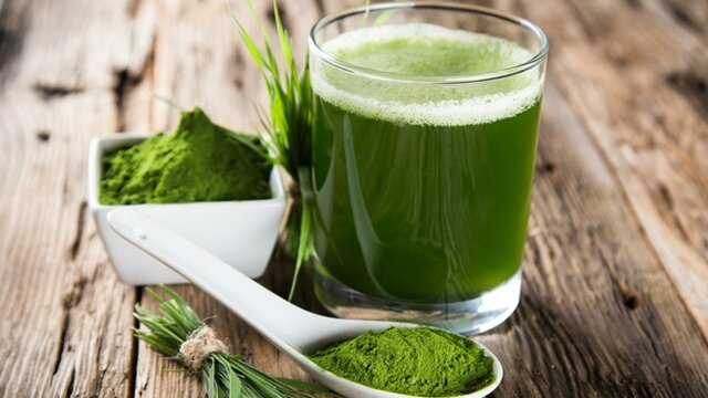 organifi-green-juice-powder