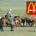 Le big mac à la graisse de mouton